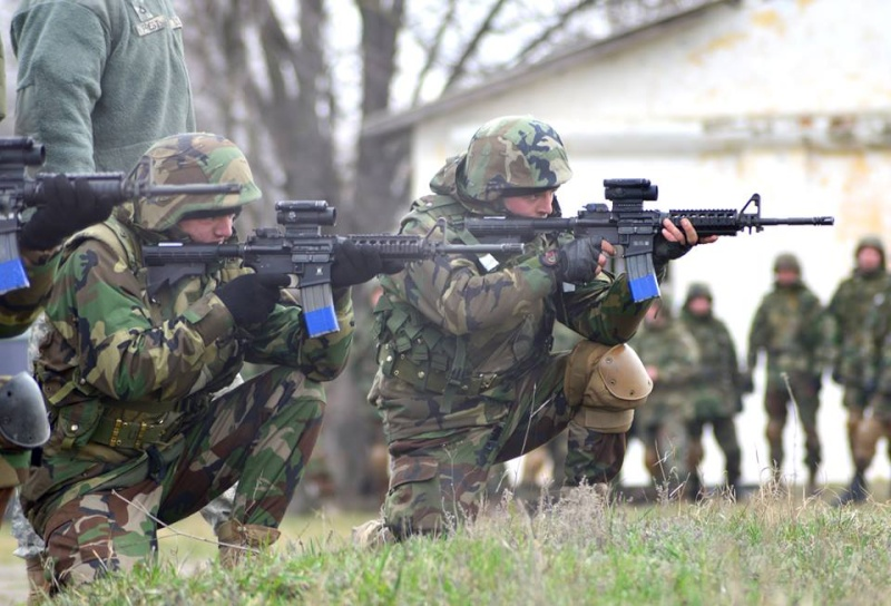 Forces armées moldaves - Page 2 2415