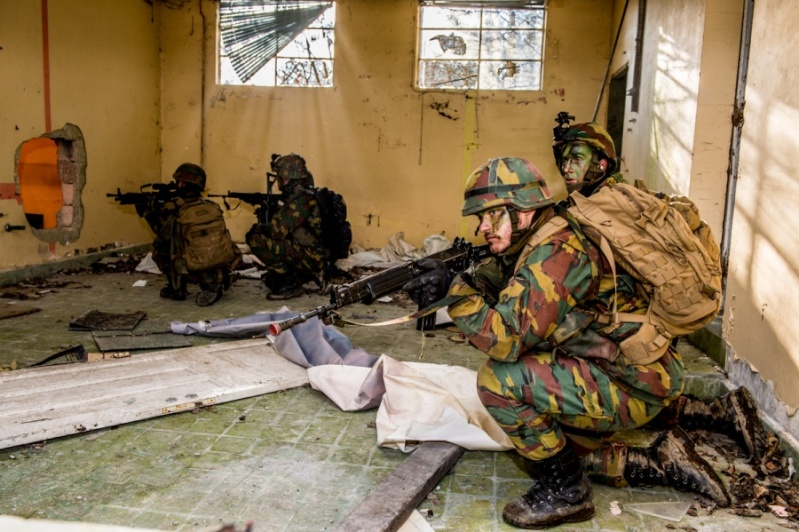 Armée Belge / Defensie van België / Belgian Army  - Page 2 2516