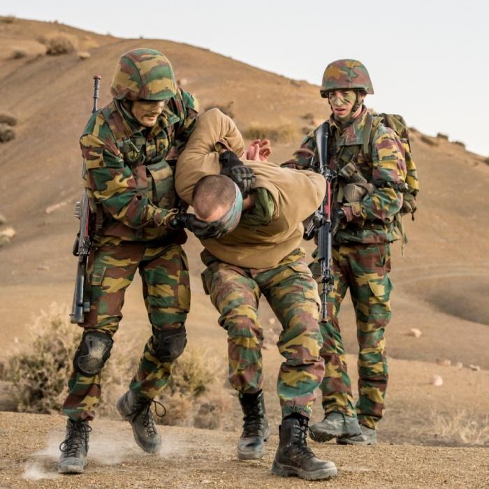 Armée Belge / Defensie van België / Belgian Army  3310