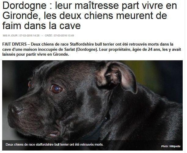 ils sont morts de faim et de soif / 24 / Dordogne Salope10