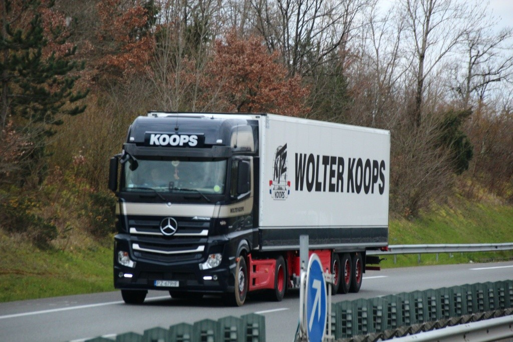 Wolter Koops - Page 3 Img_1241