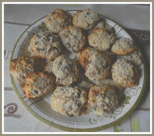 Cookies choco-noisette-citron Dscn3016