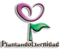 Cómo publicar un mensaje con imagen Logo-n10