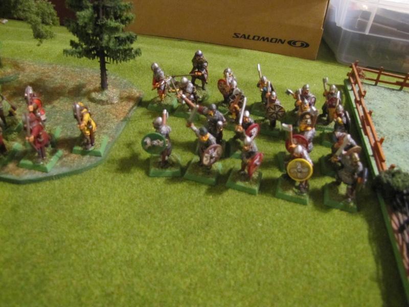 [Saga] Les warbands - Page 3 Img_2646