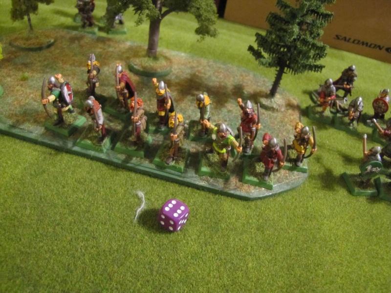[Saga] Les warbands - Page 3 Img_2648