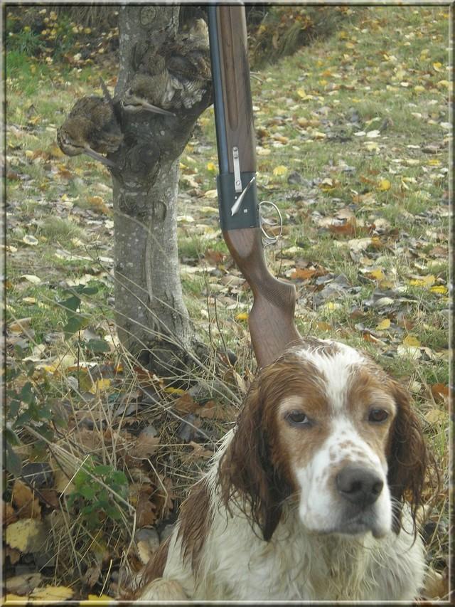 USKY,le chien d' une vie  020_211