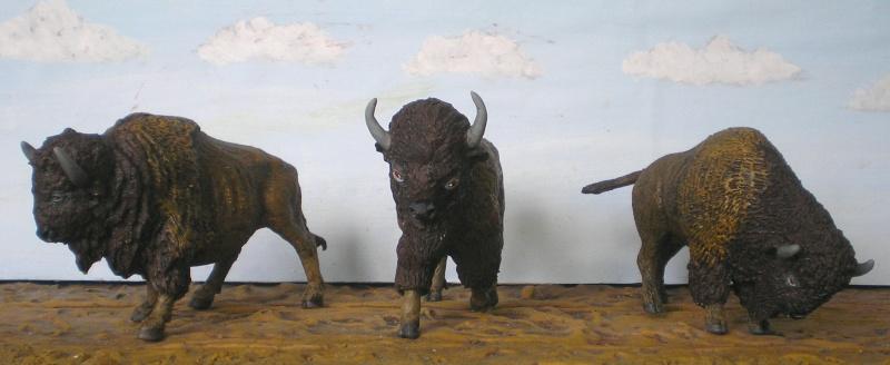 Bemalungen, Umbauten, Modellierungen - neue Tiere für meine Dioramen - Seite 2 222b6a10
