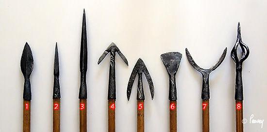 archerie médiévale 55180511