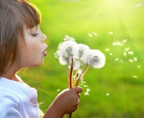 Allergies saisonnieres, les remèdes naturels Image14