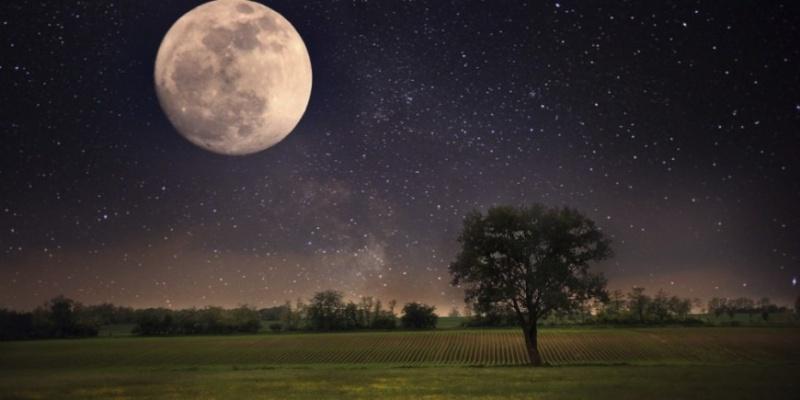La lune ,son incroyable influence  Mondsc10