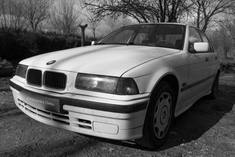 BMW 318i E36 M40 _mg_3811