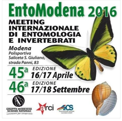 Entomodena 2016 Screen17