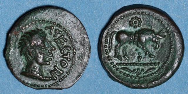 Bronze Pictons - Atectori DT. 3722 LT. 4349 Atecto10