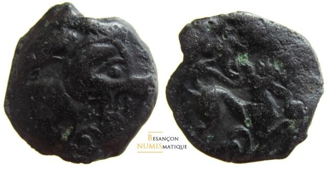Les bronzes au loup chez les bituriges  Loup_710