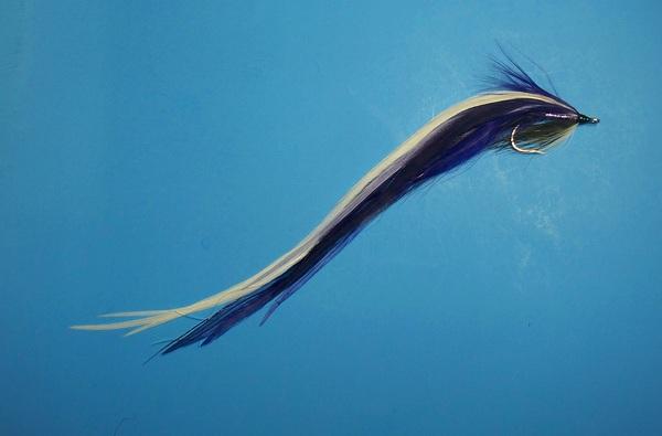 """""""Purple Heron"""" Purple10"""