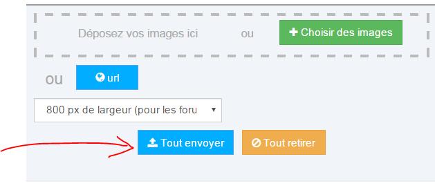 Insérer une image avec le nouveau servimg Tout_e11