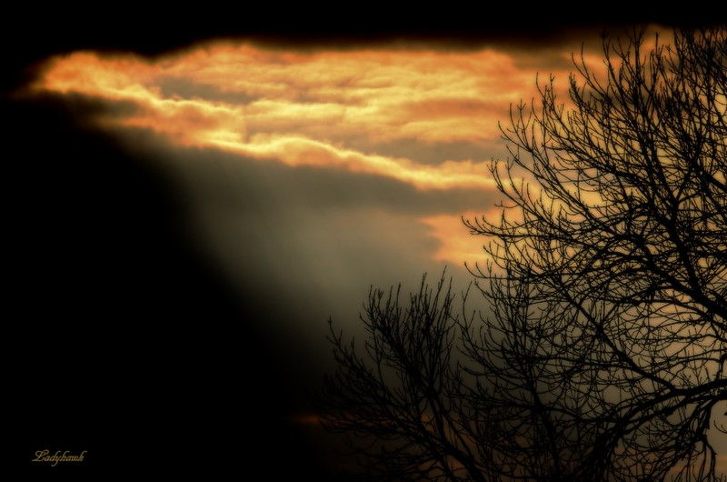le coucher Img_9810