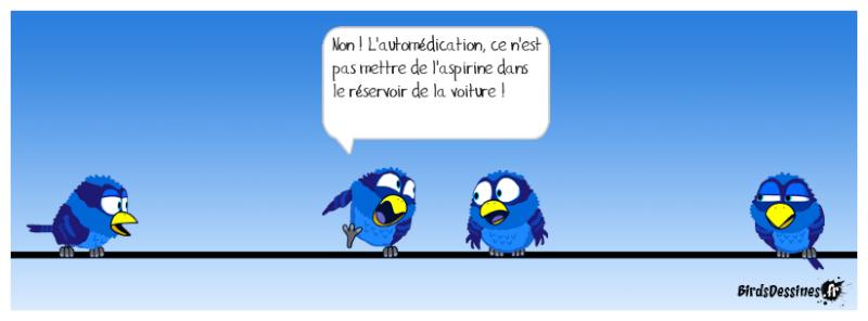 Les Birds - Page 14 Legras10