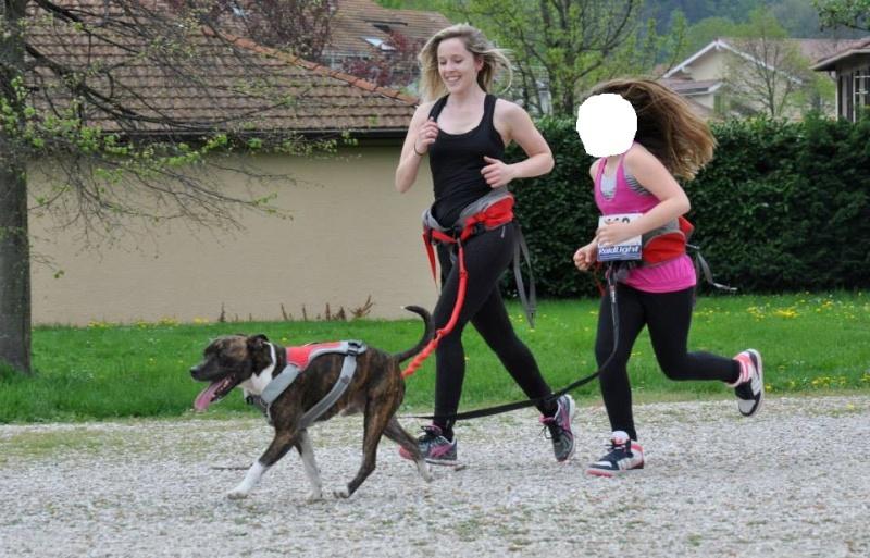Team Ptit'LU et les sports canins : canirandonnée canicross canivtt canitrottinette 10418310