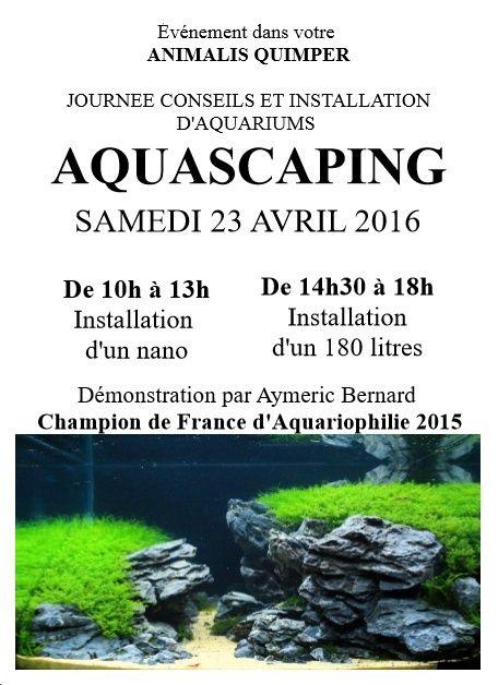 23.04.2016 aquascaping animalis Quimper Affich10