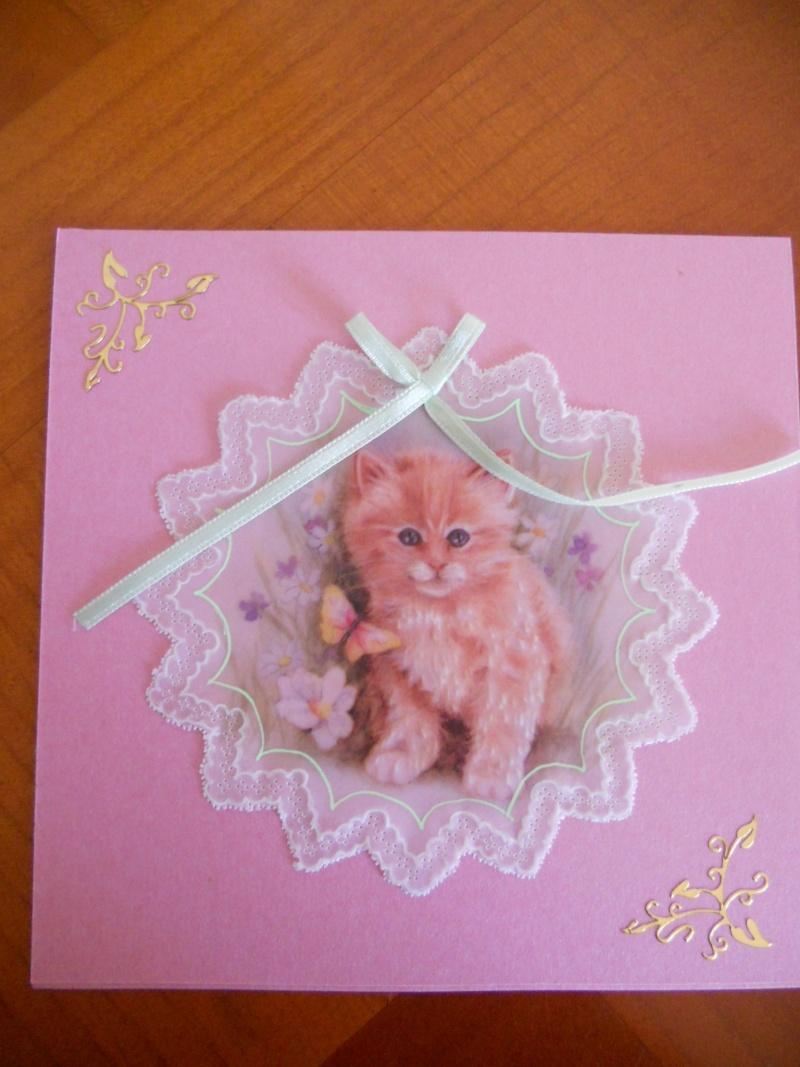 un chaton tout mignon Dscn7410