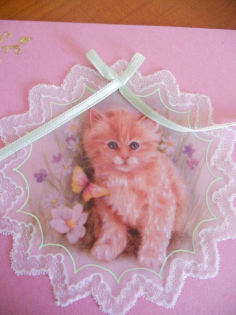 un chaton tout mignon Dscn7411