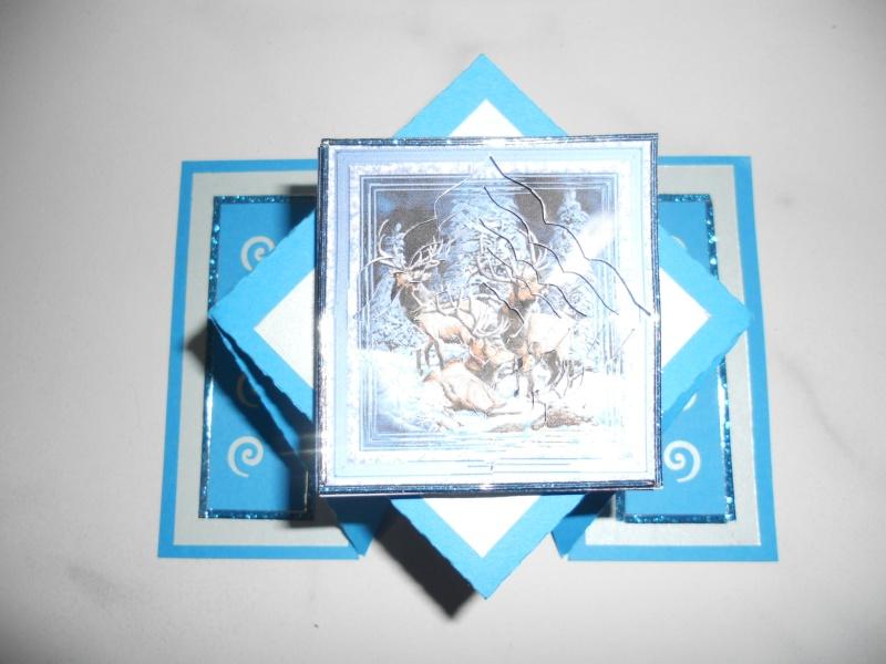 Cartes sautantes de Nerina Dyfi_b10