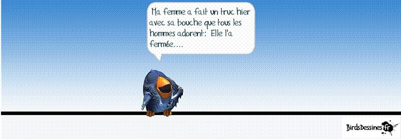 une petite blague :) - Page 17 Birds210