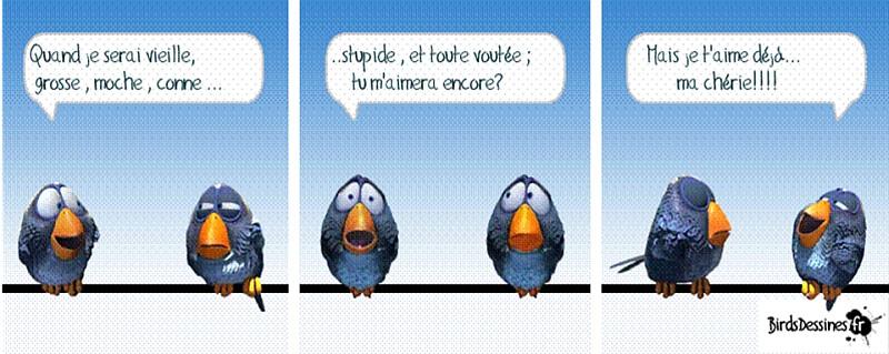 une petite blague :) - Page 17 Birds610