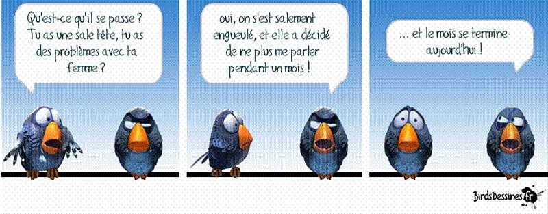 une petite blague :) - Page 17 Birds710
