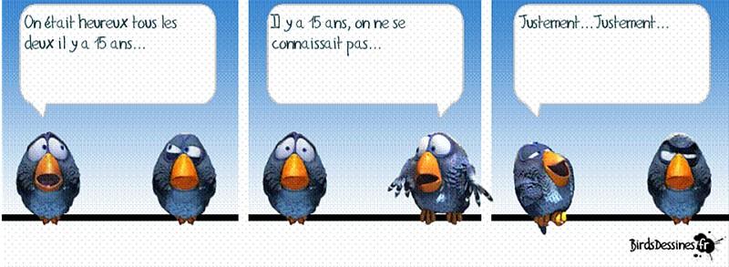 une petite blague :) - Page 17 Birds810