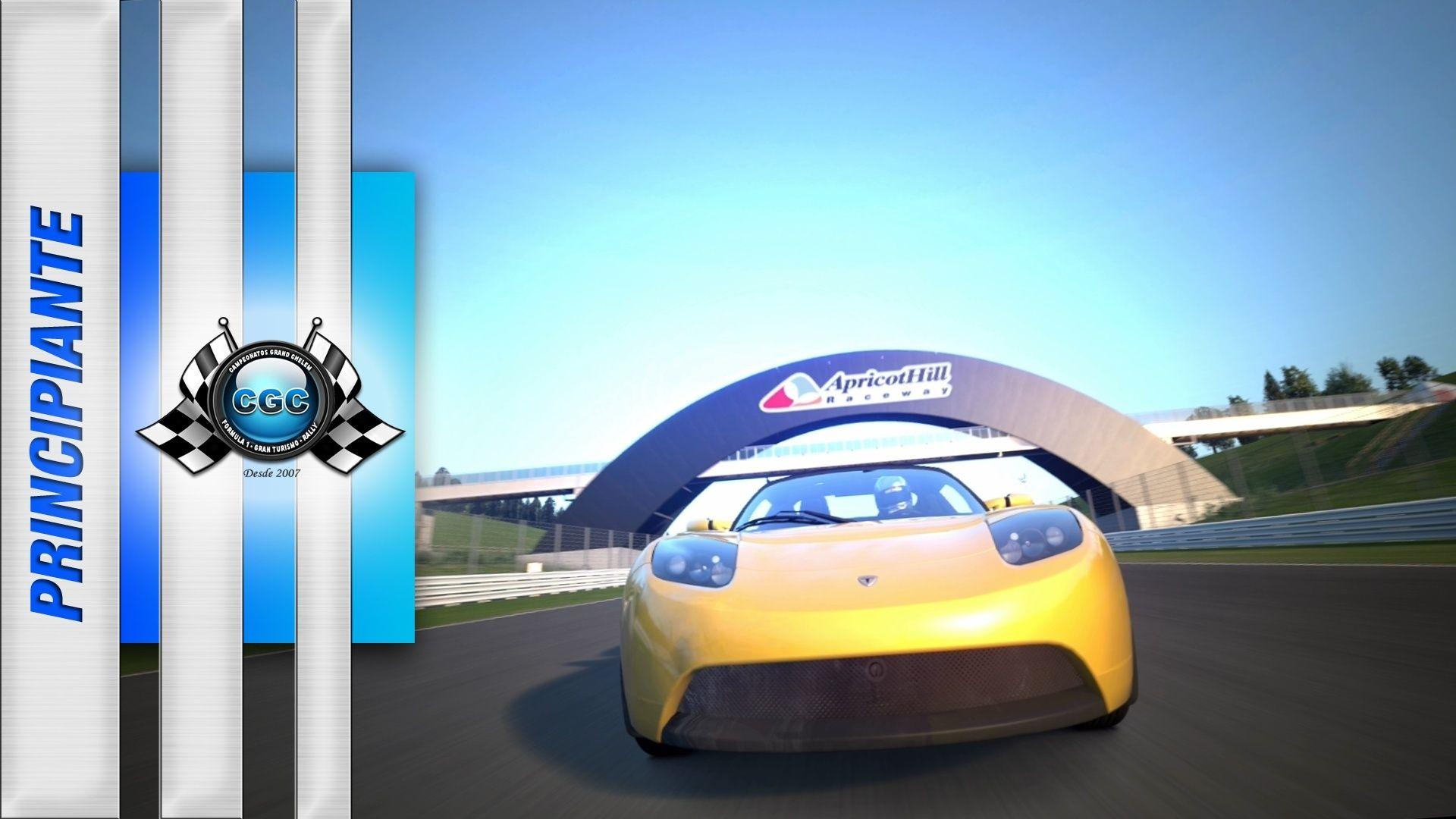 Entrenamientos Oficiales -> Apricot Hill – Tesla Roadster (6/03/2016) Tesla10