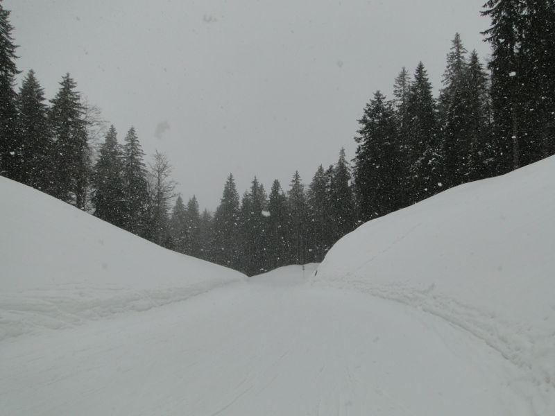 Un tour dans le massif du Jura Dsc04214