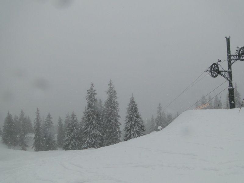 Un tour dans le massif du Jura Dsc04219