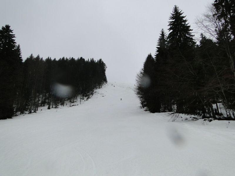Un tour dans le massif du Jura Dsc04223