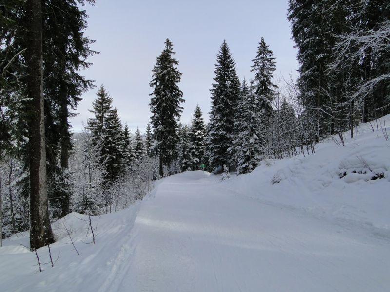 Un tour dans le massif du Jura Dsc04235