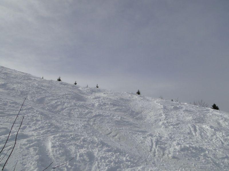 Un tour dans le massif du Jura Dsc04239