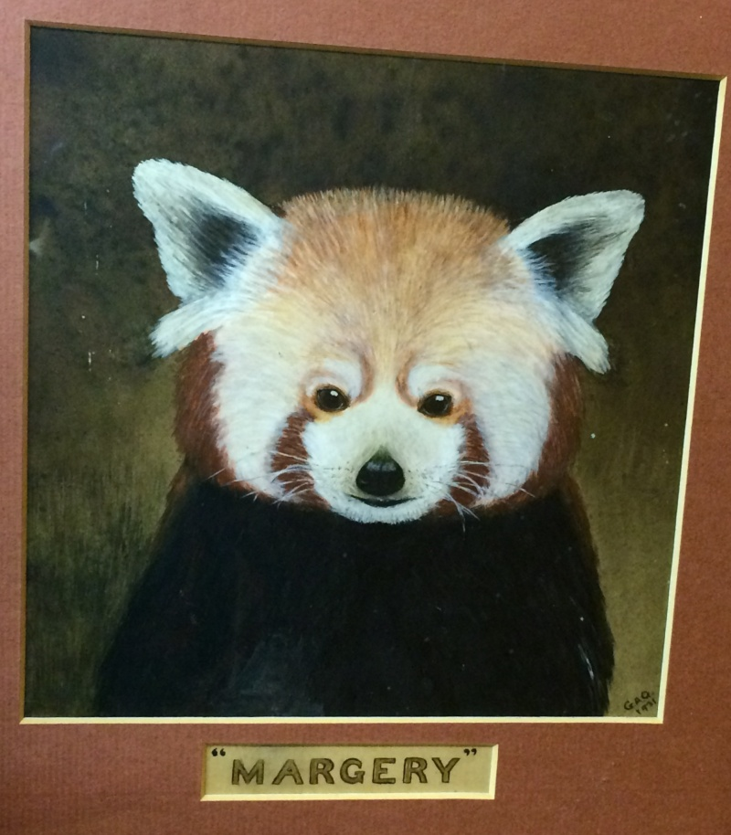 Painting of red panda  Image98