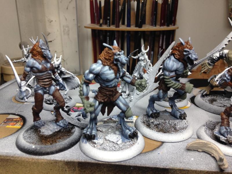 Armées Wrath of Kings 011