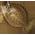 L'étang à poissons [Dans le jardin fermier et aquatique] Flound11