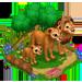 Vous cherchez un animal ? Venez cliquer ici ! Lionha10