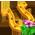 Cheval Leprechaun Luckyg10
