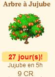 Arbre à jujube => Jujube Sans_100