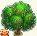 Vous cherchez un arbre ? Venez cliquer ici !!! Sans_242