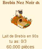 Brebis Nez Noir du Valais / Mouton Skateur => Lait de Brebis Sans_t78
