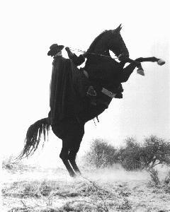 ninaa, nouvelle membre ^__^^  Zorro_10