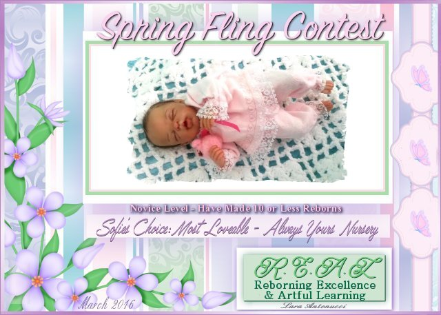2016 Spring Fling Novice Contest Logos Aaa_so10
