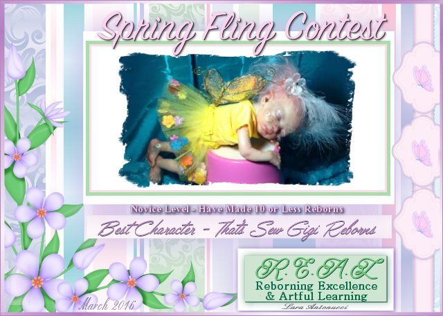 2016 Spring Fling Novice Contest Logos Aaa_sp14
