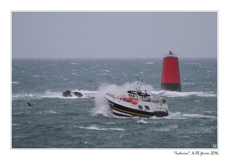 [VIE DES PORTS] Quelques bateaux de pêche (sur nos côtes Françaises) - Page 21 20160214