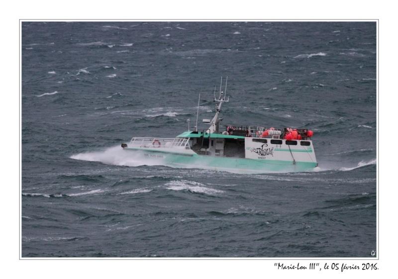 [VIE DES PORTS] Quelques bateaux de pêche (sur nos côtes Françaises) - Page 21 20160215